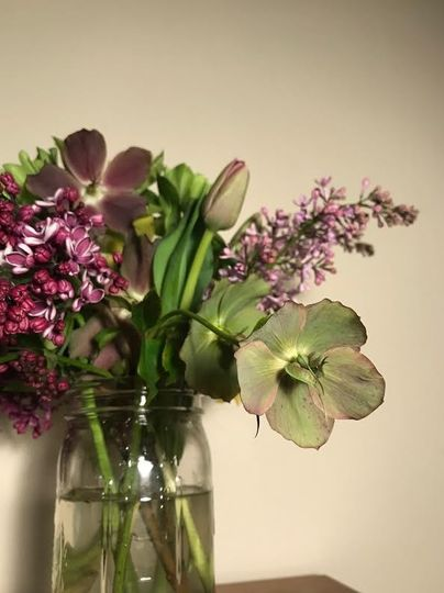 Lilacs, tulips and hellebore!