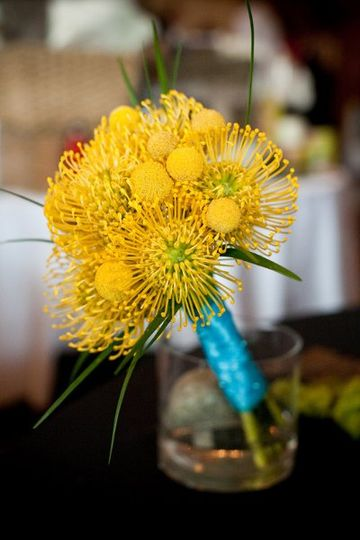 Pin cushion protea, lily grass , billy balls