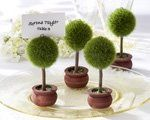 Tmx 1223063157960 Topiaryphotoholder Solon wedding favor