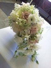 Tmx 1485873640576 220x2201484707679603 2013 05 31 11.07.00 Cedar Rapids wedding florist