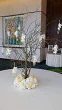 Tmx 1485964234633 220x2201485742383989 20140927130032 Cedar Rapids wedding florist