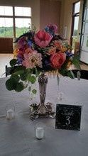 Tmx 1485964321500 220x2201485744014368 20160723101747 Cedar Rapids wedding florist