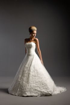 Ball gown type dress