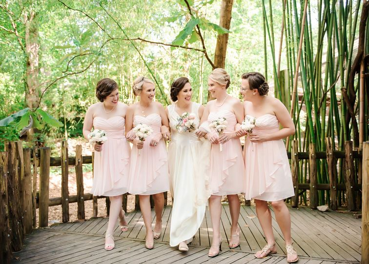 Bride and her bridesmaids photo