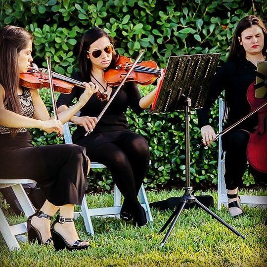String Trio/Old Cuttler Bay Wedding