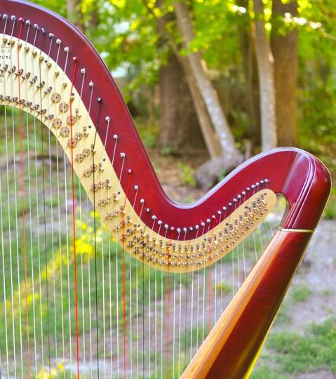 Close-up of harp