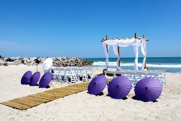 Violet umbrellas