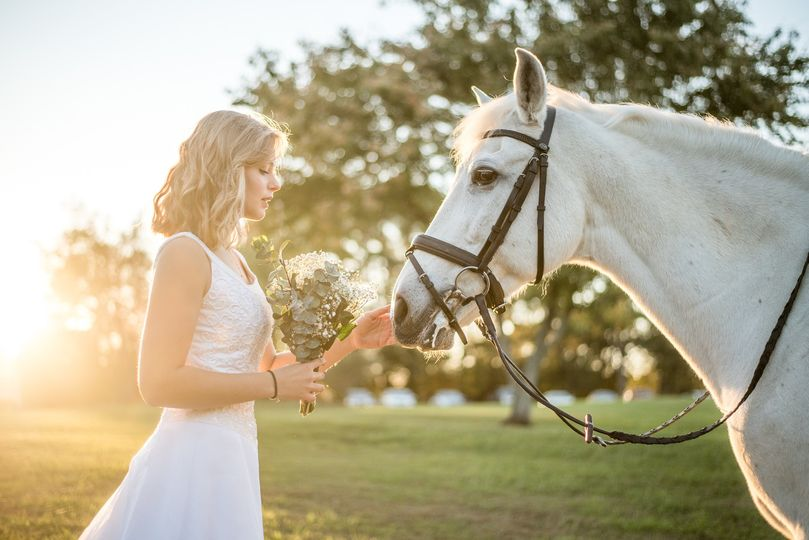 Bridal Stables