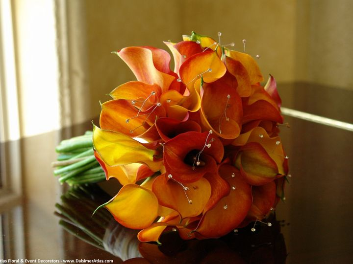 Tmx 1441927589403 Bridal Bouquet Wedding Flowers Dalsimer Atlas 5 Deerfield Beach, Florida wedding florist