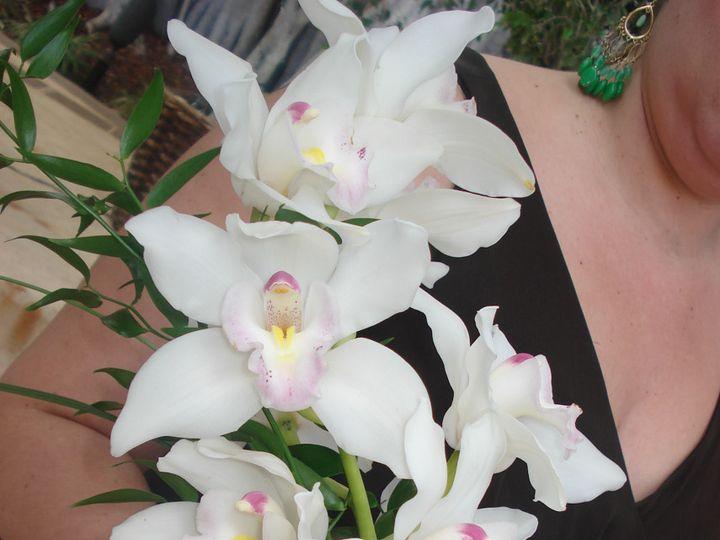 Tmx 1441927595861 Bridal Bouquet Wedding Flowers Dalsimer Atlas 6 Deerfield Beach, Florida wedding florist