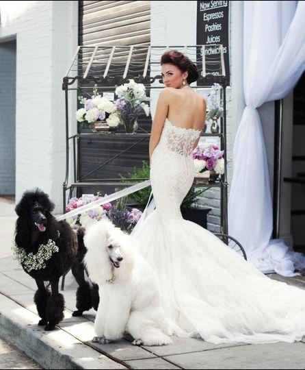 bridal hair by remona health dc md va