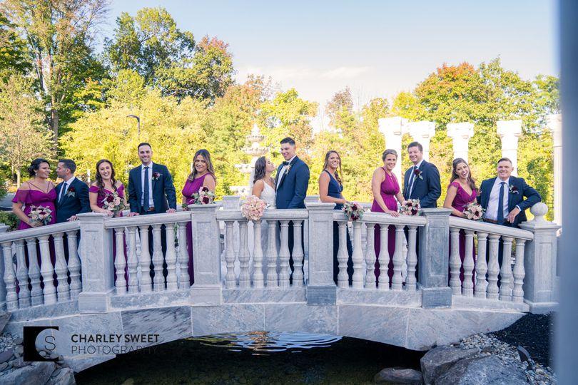 Wedding party on the bridge