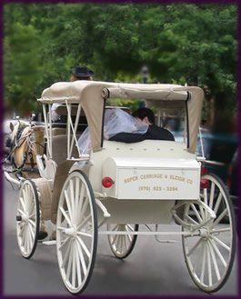 wedding carriage back