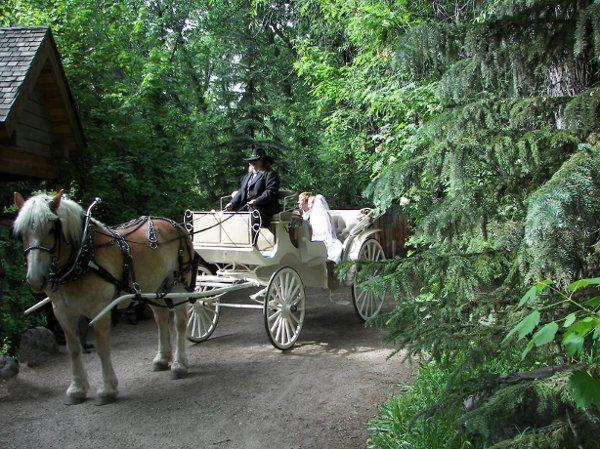 Tmx 1289399339528 BenWedding1 Aspen wedding transportation