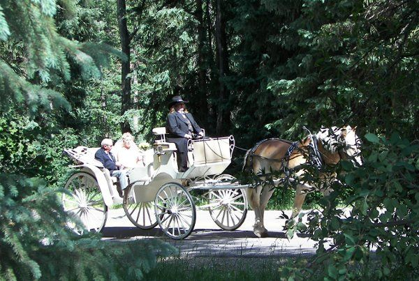 Tmx 1289399871496 DagandSepsWedding Aspen wedding transportation