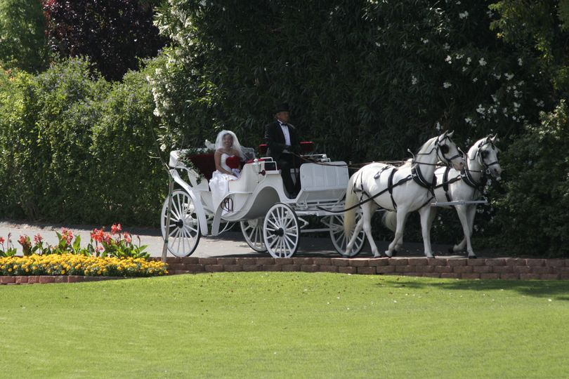 Bride in her carriage