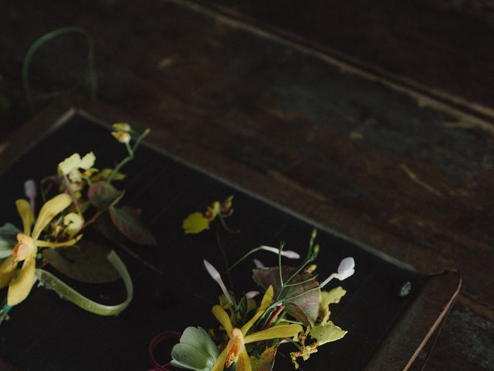 Tmx 1488991815819 Springweddingflowersbynectarroot Weddingfloraldesi Burlington, Vermont wedding florist