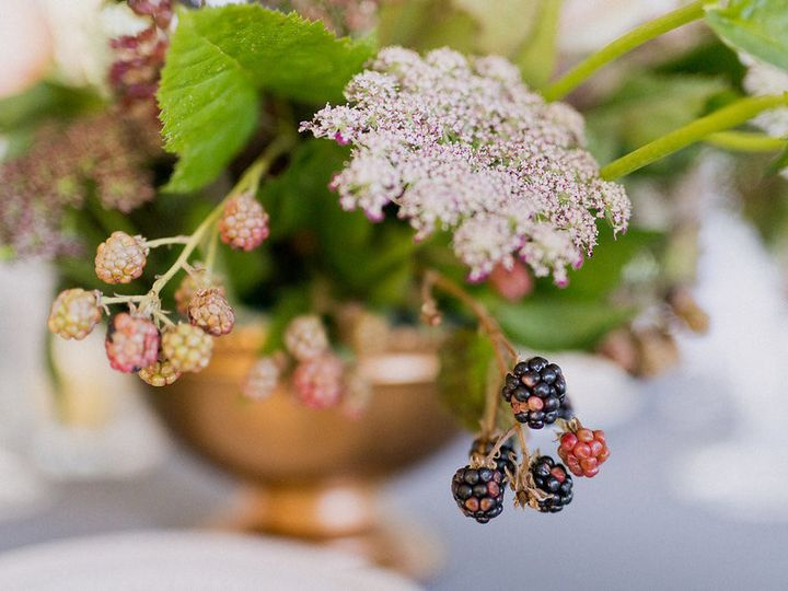 Tmx 1490612385159 20160820 Nr Twinfarms 022021005884 3423 Burlington, Vermont wedding florist
