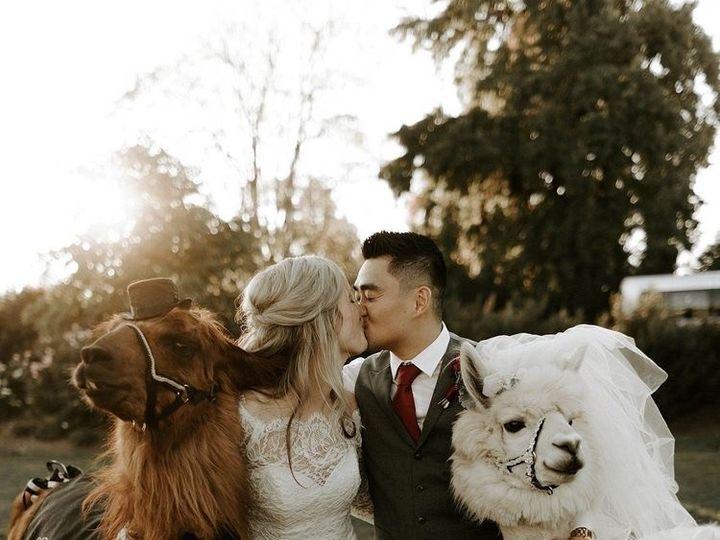 Tmx Img 0886 51 764885 157715041299536 Philadelphia, PA wedding officiant