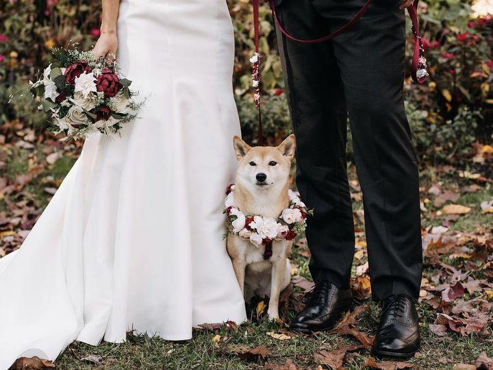 Tmx Img 3021 51 764885 162537147417549 Philadelphia, PA wedding officiant