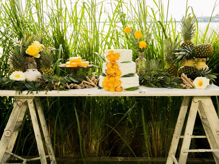 Tmx 1456872083321 Pineapplestyledshoot0025 Columbia wedding cake