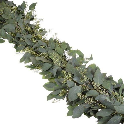 20dff3f26d2c9178 1529529211 cf9b494fef9d68e7 1529529211561 5 Seeded Eucalyptus