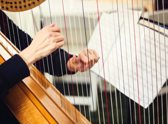 Tmx Harppic Hands 51 750095 Minnetonka, Minnesota wedding ceremonymusic