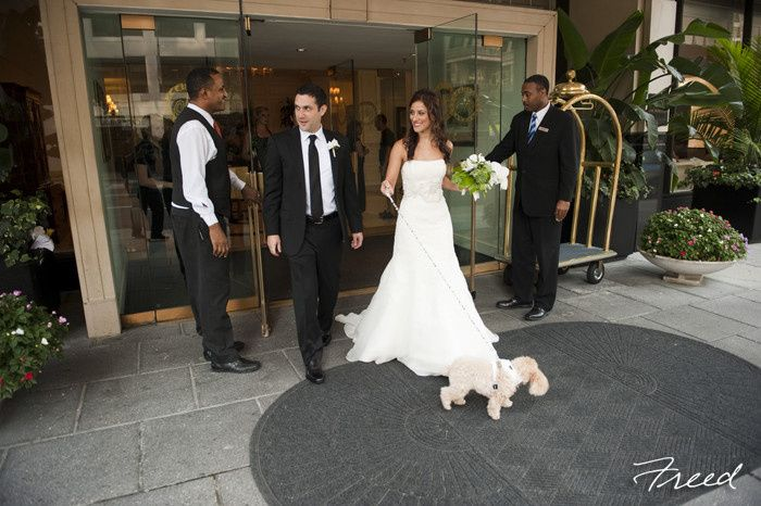 Tmx 1388699240833 Freed7728016 Washington, DC wedding venue