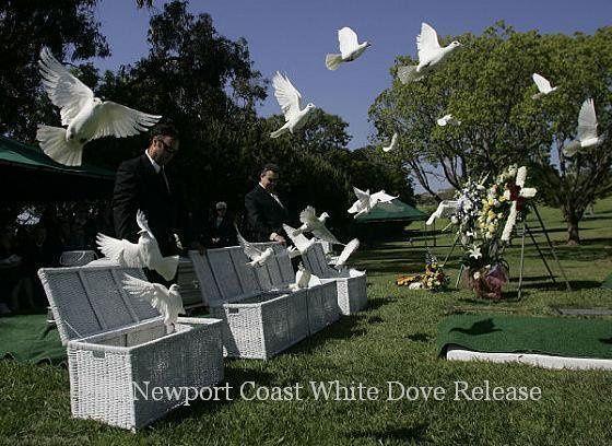 Tmx 1246695684859 Newportcoastwhitedoverelease002 Huntington Beach wedding rental