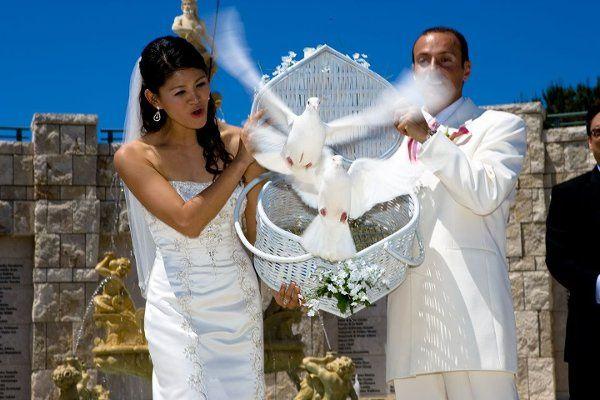 Tmx 1265514512294 Ocdovessoooo Huntington Beach wedding rental