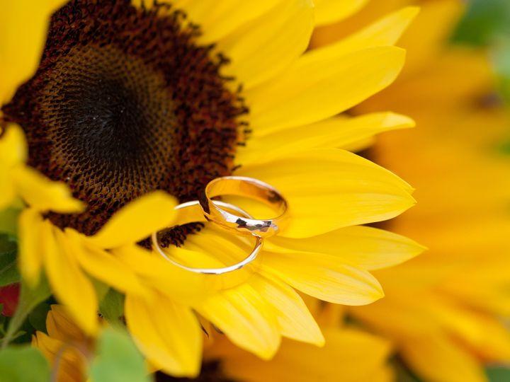 Tmx 1418347015247 Northphotography152 Westford wedding photography