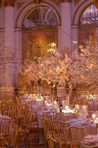 Tmx 1359171532407 AcuteDB38 Brooklyn wedding florist