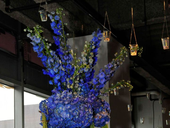 Tmx 1522067159 B4f3dbe740a95e9b 1522067158 538459222d3d6c6f 1522067155031 1 Blue Tears1 Brooklyn wedding florist