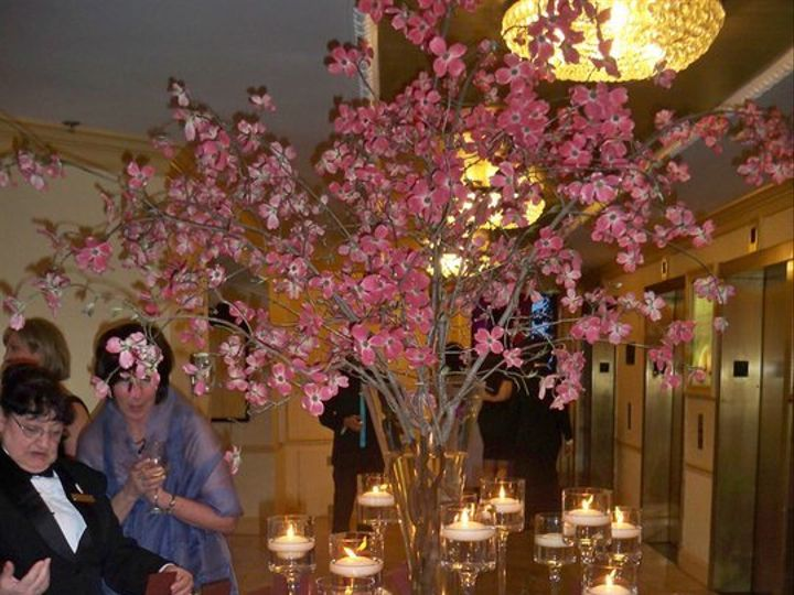 Tmx 1342756142831 2310221015029597286374783553374695458484743903n Holland wedding planner