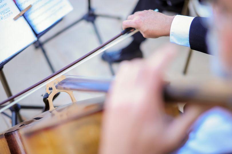 Musicians hands
