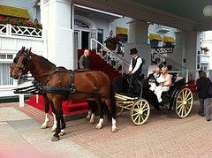 Tmx 1369406862060 Horseandcarriage Mackinac Island, Michigan wedding venue