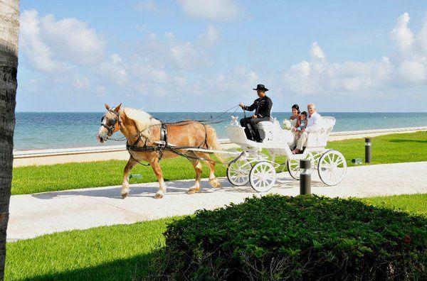 Tmx 1288894206577 CarriageRide3 Overland Park wedding travel