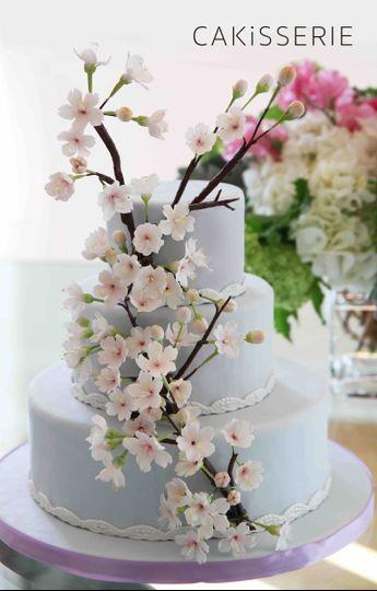 spring cherry blossom cake cakisserie