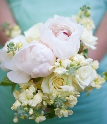 Affordable! Scentsational Florals