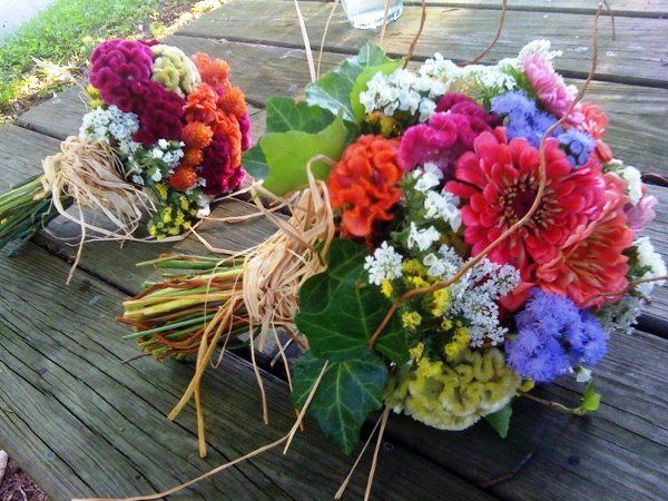 Tmx 1335828601852 EcoFriendlybouquets2 Baltimore, MD wedding florist