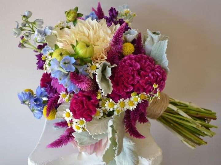Tmx 1455373948535 Fuchsia Hot Pink Cockscomb Pink Flaming Feather Ce Baltimore, MD wedding florist