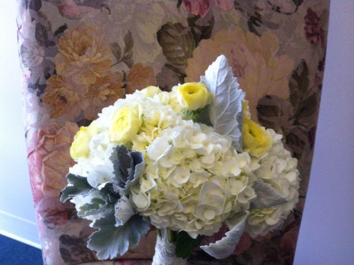 Tmx 1455374263606 Dusty Miller Yellow Ranunculus White Hydrangea Bru Baltimore, MD wedding florist