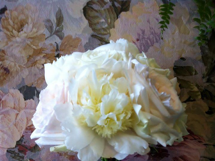 Tmx 1455374996951 White Peony White Ohara Garden Rose Bouquet Baltimore, MD wedding florist