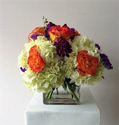 Tmx 1455376177382 Hydrangea Orange Circus Rose Purple Stock Purple S Baltimore, MD wedding florist