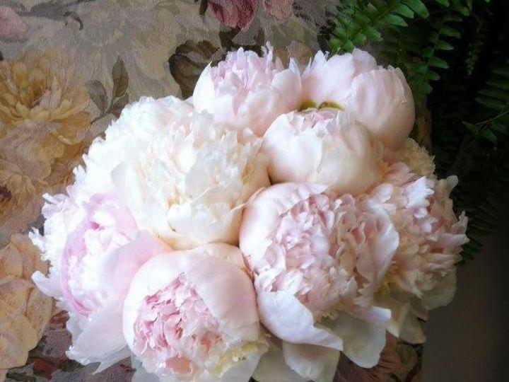 Tmx 1455376978450 Blush Peony Bouquet Baltimore, MD wedding florist