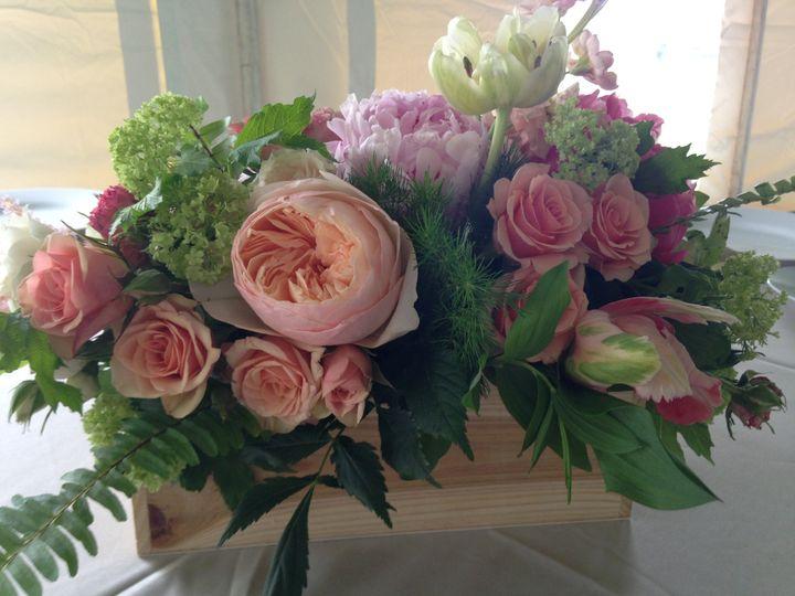 Tmx 1439844834126 Img8626 Marion, MA wedding florist
