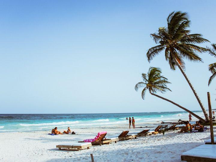 Tmx Palm Trees Chairs On Beach 51 1022495 Carmel, Indiana wedding travel
