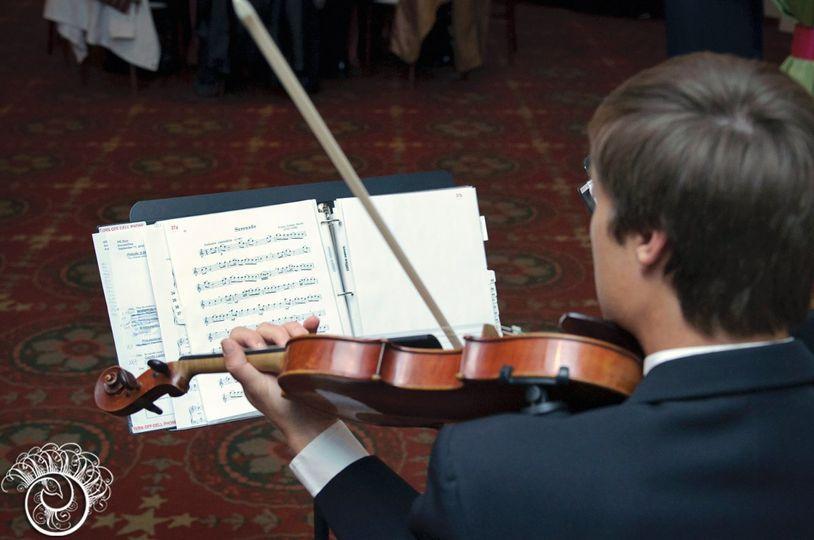 Violinist at work