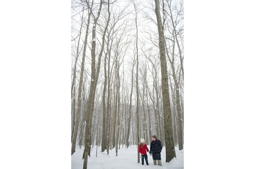 800x800 1402509579904 engagementamtholland
