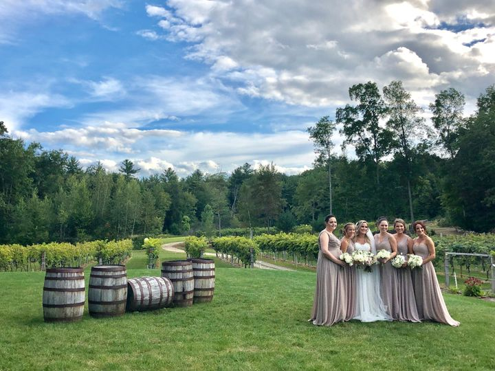 A bridal party under blue skies
